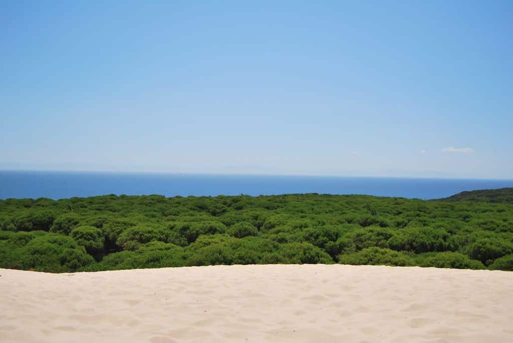 Mejores playas de Cádiz - PLAYA DE BOLONIA